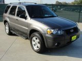 2006 Dark Shadow Grey Metallic Ford Escape XLT V6 #41111951