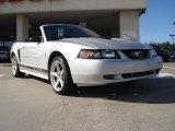 2002 Satin Silver Metallic Ford Mustang V6 Convertible #41177584