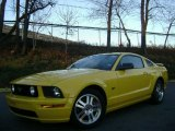 2006 Screaming Yellow Ford Mustang GT Premium Coupe #41177418