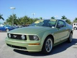 2006 Ford Mustang GT Premium Coupe Data, Info and Specs