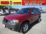 2006 Redfire Metallic Ford Escape XLT V6 #41301195