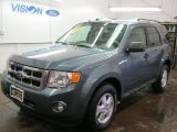 2010 Steel Blue Metallic Ford Escape XLT 4WD #41301275