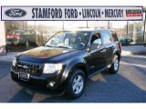 2009 Black Ford Escape Hybrid 4WD #41403972