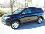 2011 Ebony Black Kia Sorento LX V6 #41423409
