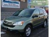 2007 Green Tea Metallic Honda CR-V LX 4WD #41459787
