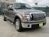 2010 Sterling Grey Metallic Ford F150 XLT SuperCrew #41459795
