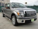 2010 Sterling Grey Metallic Ford F150 XLT SuperCrew #41459796