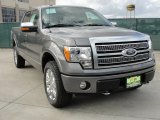 2010 Sterling Grey Metallic Ford F150 Platinum SuperCrew 4x4 #41459798