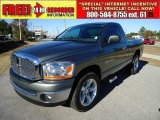 2006 Mineral Gray Metallic Dodge Ram 1500 ST Regular Cab #41534663