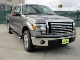 2010 Sterling Grey Metallic Ford F150 XLT SuperCrew #41534147