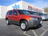 2006 Blazing Copper Metallic Ford Escape XLS #41534490