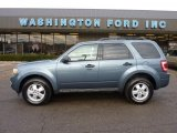 2010 Steel Blue Metallic Ford Escape XLT 4WD #41631810