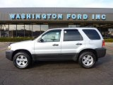 2006 Silver Metallic Ford Escape XLT 4WD #41631815