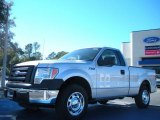 2010 Ingot Silver Metallic Ford F150 XL Regular Cab #41631500