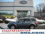 2010 Steel Blue Metallic Ford Escape XLT 4WD #41700736