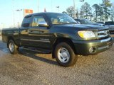 2006 Toyota Tundra SR5 Access Cab Data, Info and Specs