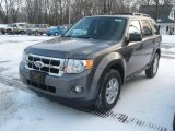 2011 Sterling Grey Metallic Ford Escape XLT #41743563