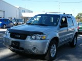 2006 Silver Metallic Ford Escape Hybrid #41743601