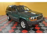 1999 Jeep Grand Cherokee Everglade Green Pearl
