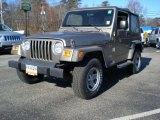 2006 Light Khaki Metallic Jeep Wrangler X 4x4 #41790656