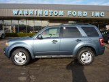 2010 Steel Blue Metallic Ford Escape XLT 4WD #41791184