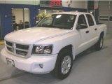 2010 Stone White Dodge Dakota Big Horn Crew Cab 4x4 #41866186