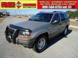2002 Silverstone Metallic Jeep Grand Cherokee Laredo 4x4 #41866275