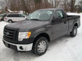 2011 Sterling Grey Metallic Ford F150 XL Regular Cab #41935178