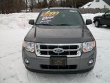 2011 Sterling Grey Metallic Ford Escape XLT 4WD #41935179