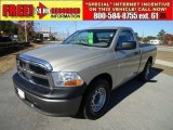2009 Light Graystone Pearl Dodge Ram 1500 ST Regular Cab #42063592