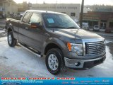 2011 Sterling Grey Metallic Ford F150 XLT SuperCab 4x4 #42099490