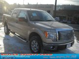 2011 Pale Adobe Metallic Ford F150 XLT SuperCrew 4x4 #42099494