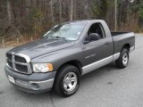 2002 Graphite Metallic Dodge Ram 1500 ST Regular Cab #42188422