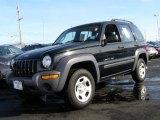 2002 Black Jeep Liberty Sport 4x4 #42188583