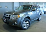 2011 Sterling Grey Metallic Ford Escape XLT V6 4WD #42378721