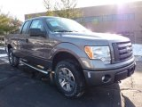 2011 Sterling Grey Metallic Ford F150 STX SuperCab 4x4 #42440049