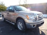 2011 Pale Adobe Metallic Ford F150 XLT SuperCab #42440061