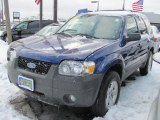 2006 Sonic Blue Metallic Ford Escape XLT V6 4WD #42440523