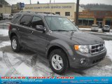 2011 Sterling Grey Metallic Ford Escape XLT 4WD #42517604