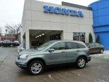 2010 Opal Sage Metallic Honda CR-V EX-L AWD #42517492