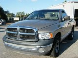 Light Almond Pearl Dodge Ram 1500 in 2002