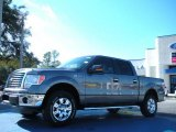 2011 Sterling Grey Metallic Ford F150 XLT SuperCrew 4x4 #42596443