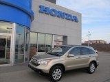 2008 Borrego Beige Metallic Honda CR-V EX-L 4WD #42726225