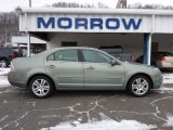 2009 Moss Green Metallic Ford Fusion SEL V6 #42752561