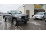 2001 Dodge Ram 1500 Graphite Gray Metallic