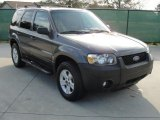 2006 Dark Shadow Grey Metallic Ford Escape XLT V6 #42928425