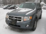 2011 Sterling Grey Metallic Ford Escape XLT V6 4WD #42990778