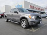2010 Sterling Grey Metallic Ford F150 STX SuperCab #42990598