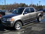2005 Phantom Gray Pearl Toyota Tundra SR5 Double Cab #43080409