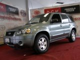 2006 Titanium Green Metallic Ford Escape Limited 4WD #43080648